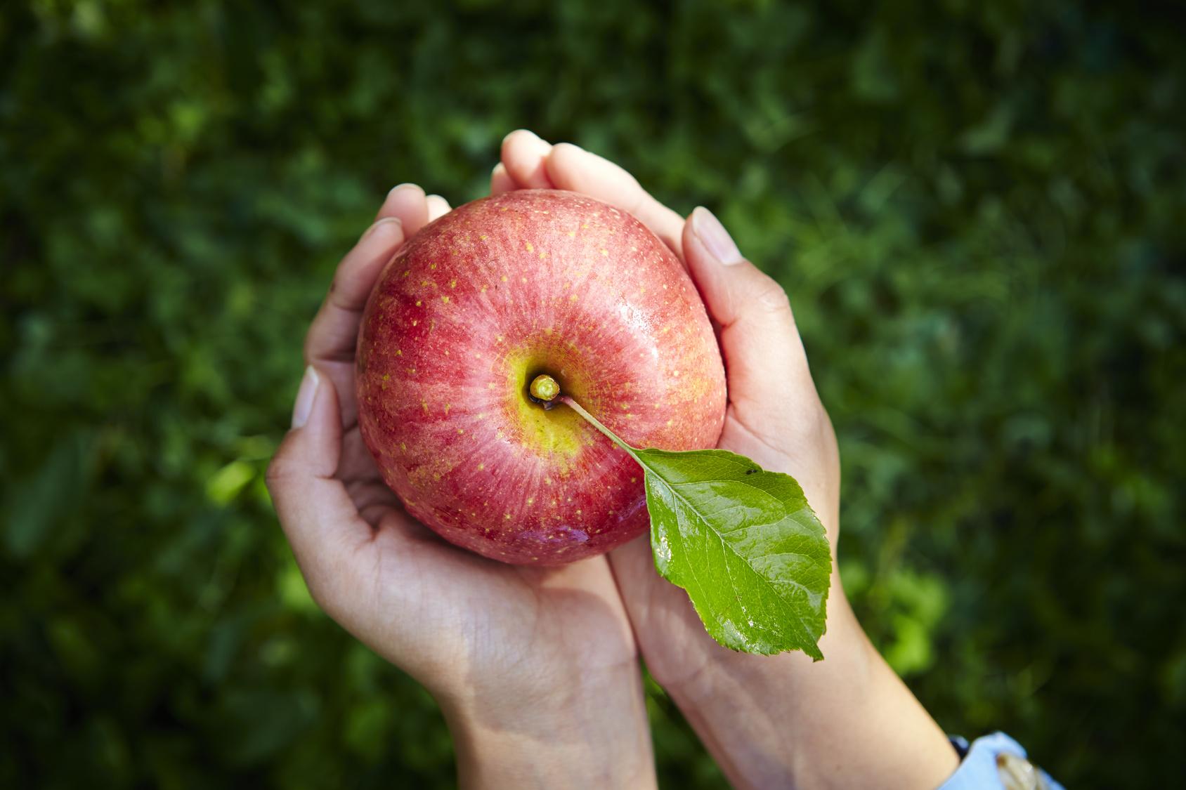 ピュアリフトAリンゴ